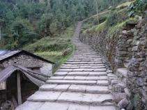 Trappesti gjennom Gurung-land/Dag Norling